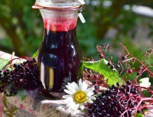 elderberry supplement